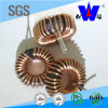 Lgh Toroidal Wirewound Choke Coil Inductor with ISO9001