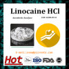 Anti-Paining Anesthetic Anodyne Linocaine HCl Linocaine Hydrochloride CAS: 6108-05-0