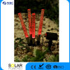 Solar Bubble Garden Light, Solar Lamp, Changing Color China Supplier