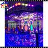 12 Players Fantasy Horse Carousel for Amusement Park