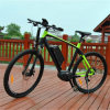 700c Middle Motor Mountain Ebike