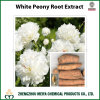 Factory Supply White Peony Root Powder Extract with Paeoniflorin 8%-20% HPLC