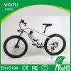 Fat Electric Bike Bicycle, E Bike with High Power 500W Fat Bike Dirt Ebike