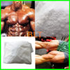 Safe Delivery 99.9% Purity 17alpha-Methyl Testosterone 65-4-3