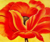 Wholesale Red Flower Design Oil Painting for Home Decoration (LH-388000)