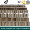 Paper Honeycomb Sandwich Panel for Building Material