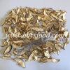 Quality Assurance Boletus Mushroom Slice