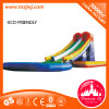 Giant Inflatable Water Slide with a Pool