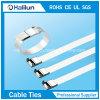 UL Certificate Epoxy Coated Stainless Steel Wing Lock Cable Tie in 800n / 1200n