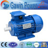 High Quality Y2 Series Three Phase Induction Motor