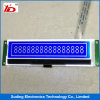 Stn Blue Cog LCD Display Screen250*64 LCM with White Backlight Used for Auto
