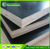 Wholesale Low Price Poplar Plywood/Construction Plywood