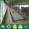 Light H Section Steel Chicken House Raising (XGZ-pH 035)