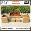 6mm Half Round Rattan Outdoor Furniture/ Rattan Sofa Furniture/Rattan Outdoor Sofa (SC-B9508-H)