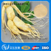 Ginseng Extract Powder Total Saponins 80%