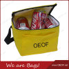 Picnic Insulation Thermal Lunch Bottles/Cans Ice Cooler Beach Bags