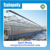High Quality Wholesale Polycarbonate Multi-Span Greenhouse