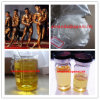 Raw Powder Testosterone Decanoate Anabolic Steroid for Muscle Growth
