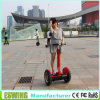 CE New Style Electric Bike (Eswing-III)