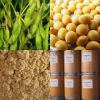 Soybean Extract (BN120913)