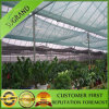 Agricultural 40% Shade Net in Green Color