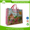 Reusable Eco-Friendly Promotional LDPE Shopping Bags