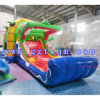 Commercial Inflatable Bouncer Slide Combo/Digital Printing Inflatable Bouncer Slide