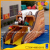 Factory Price Inflatable Slide Toy for Sale (AQ917-2)