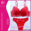 Sexy Red Ladies Bra Set/ Women's Printed Panty Underwear (P1009)