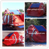 Many Fun Inflatable Fish Water Slide for Water Pool (MIC-081)