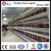 Chicken Farm Equipment Automatic H Type Chicken Cage