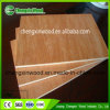 1220*2440*18mm Plywood Product Export to Dubai