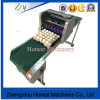 High Quality Automatic Digital Egg Inkjet Printer