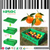 Plastic Folding Crate Fruit and Vegetable Bin
