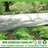 Resistan UV Grades PP Non Woven Fabric