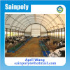 Plastic Commercial Greenhouse for Sale