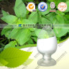 Huperzia Serrate Extract / Huperzine a