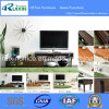 Hot Sale Modern Wooden TV Stand for Home Furniture (RX-K1048)