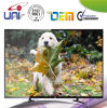2015 Different Sizes Good LED TV with Bult-in WiFi