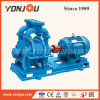 Yonjou Water Ring Liquid Vacuum Pump