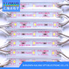 Ce/RoHS High Brightness SMD 2835 LED Module with Lens Waterproof
