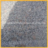 Cheapest Popular Polished Grey G383 Pearl Flower Granite for Paving