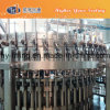 Automatic Pet Bottle Soft Drink Making Factory / Carbonated Drink Bottling Machine