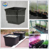 Dutch Bucket System for Growing Vegetables
