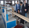 WPC/ PVC/ Plastic Window/ Door/ Ceil Extrusion Line