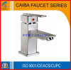 Stainless Steel Water Basin Faucet in Brushed Nickle