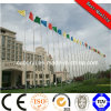 Flag Mast Stainless Steel Monitor Light Pole