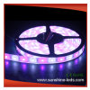 IP65 Flexible/RGB/Epistar/Brightness SMD 5050 LED Strip (CE and RoHS)