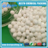 Activated Alumina for Petrochemical Catalyst Carrier