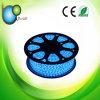 for Car Using DC24V SMD LED Strip